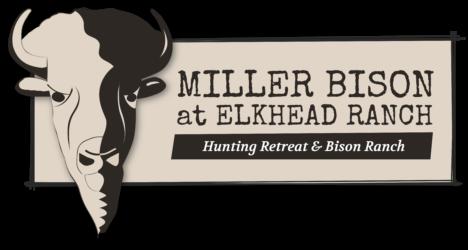 Miller Bison at Elkhead Ranch
